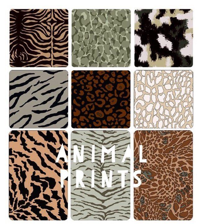 Animal-Prints-2